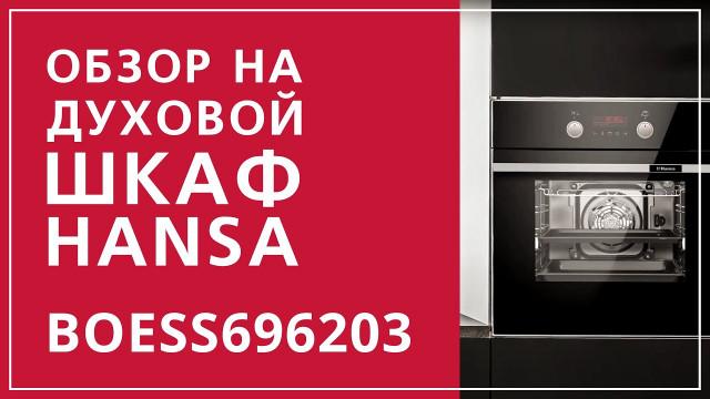 Духовой шкаф Hansa Baking Pro BOESS696203 Черный - delonghi.ru – видео 2