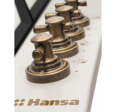 Газовая варочная поверхность Hansa BHGY620390 - hansa.ru – фото 2